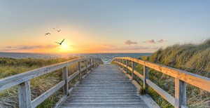 Vacation in the dunes © Marco/fotolia